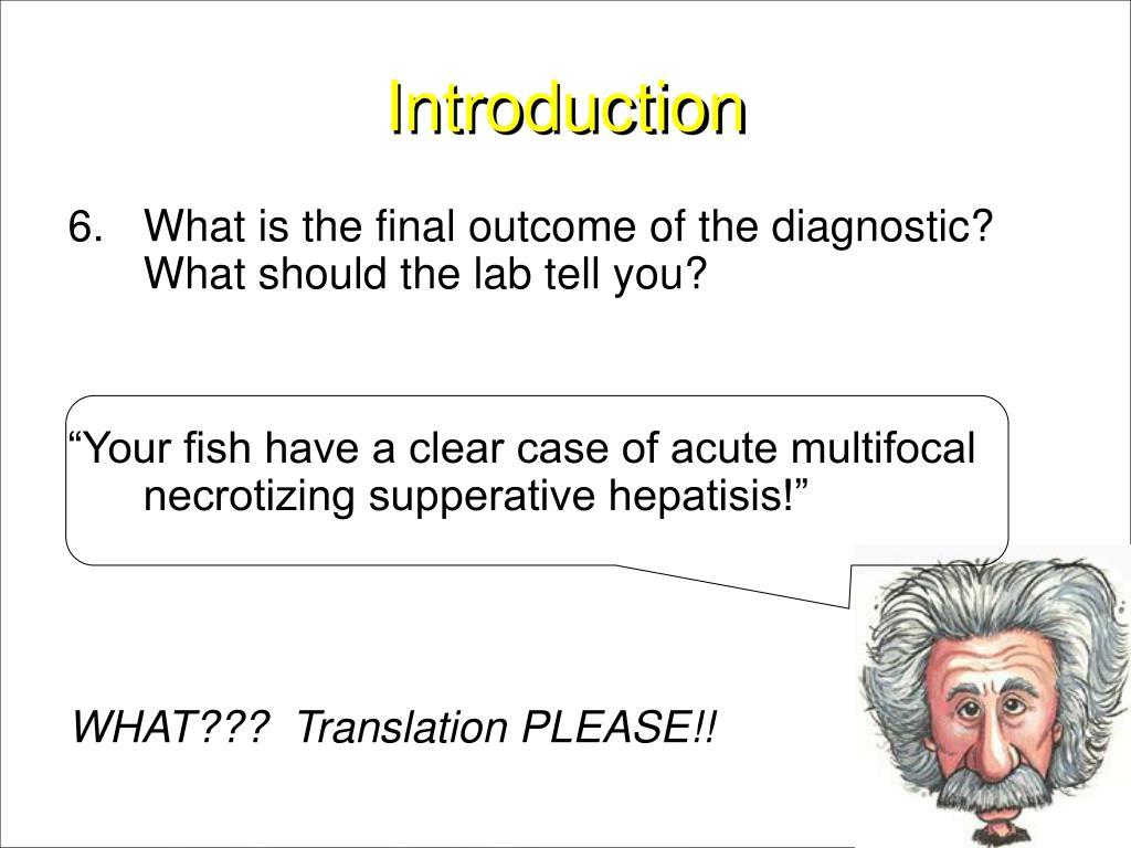 Bacterial Diagnostics Aquaculture