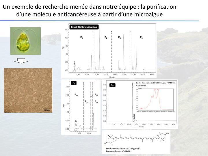 Un exemple de recherche menée dans notre équipe : la purification d'une molécule anticancéreuse à partir d'une