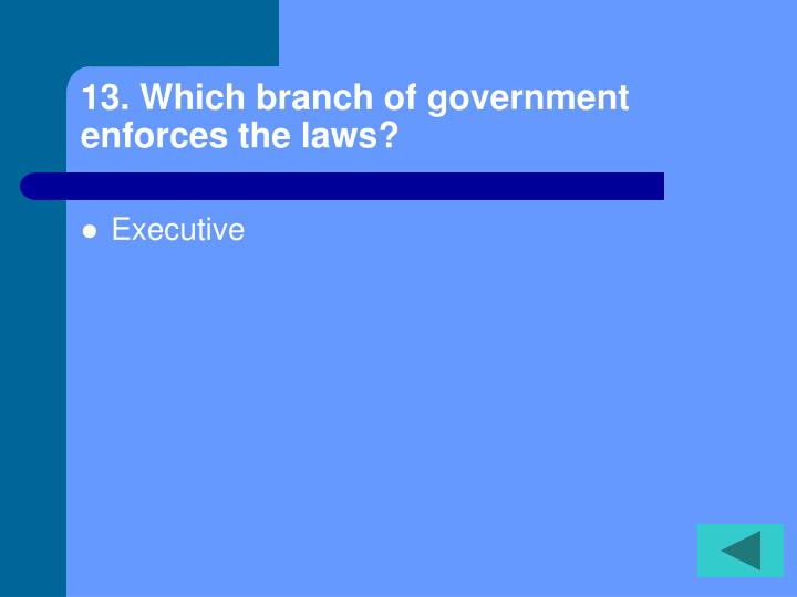 13. Which branch of government enforces the laws?