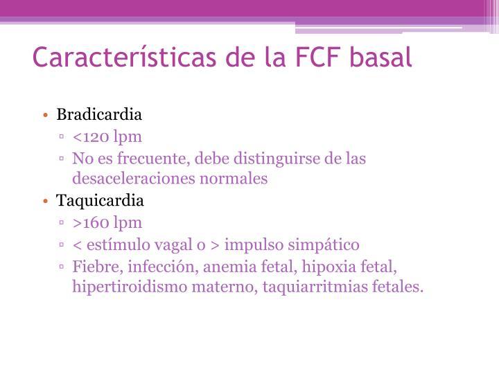 Características de la FCF basal