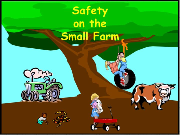 safety on the small farm n.