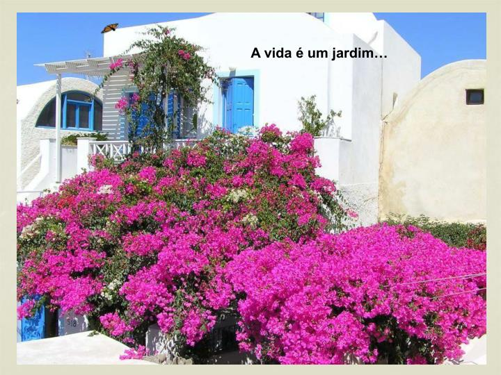 A vida é um jardim…