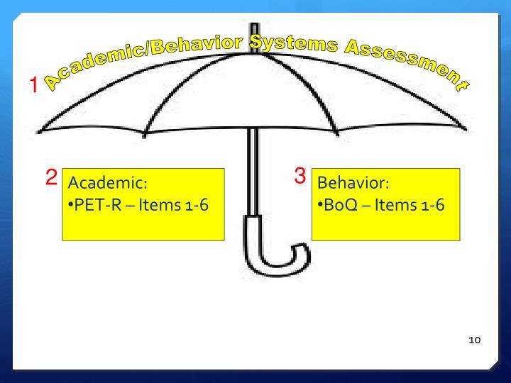 Academic/Behavior Systems Assessment