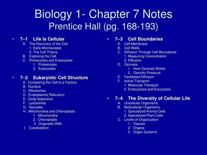 biology 1 chapter 7 notes prentice hall pg 168 193 n.