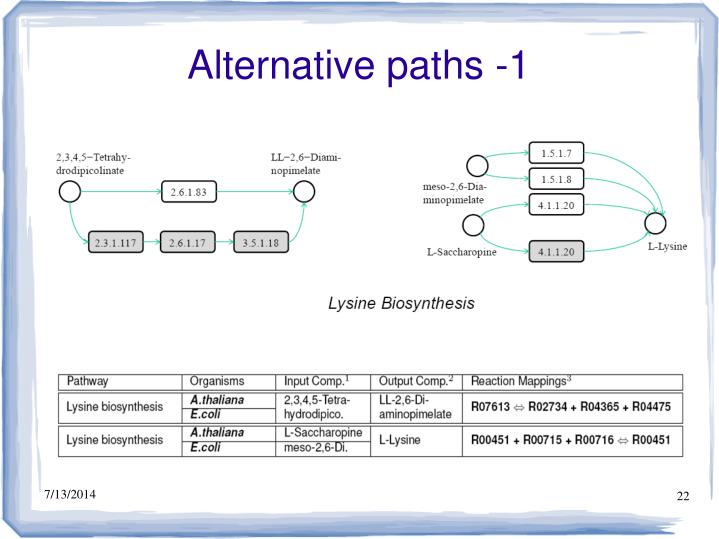 Alternative paths