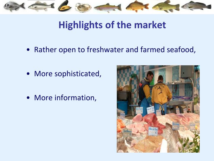 Highlights of the market