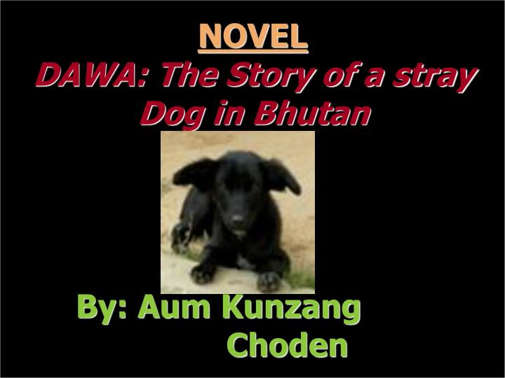 Novel dawa the story of a stray dog in bhutan by aum kunzang choden