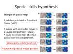 special skills hypothesis2