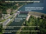 fish passage improvements upstream passage
