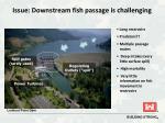 issue downstream fish passage is challenging