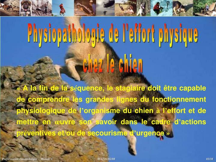 Physiopathologie de l'effort physique
