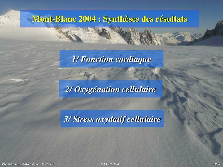 Mont-Blanc 2004 : Synthèses des résultats