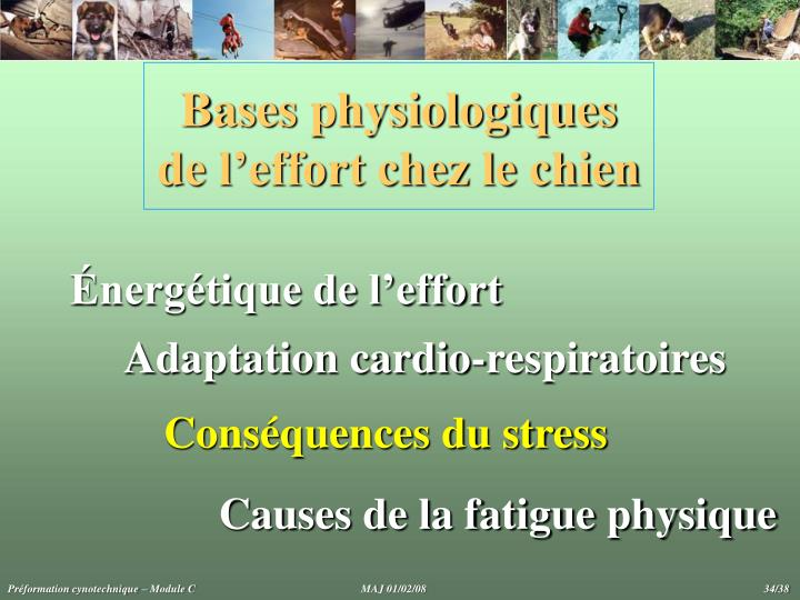 Bases physiologiques