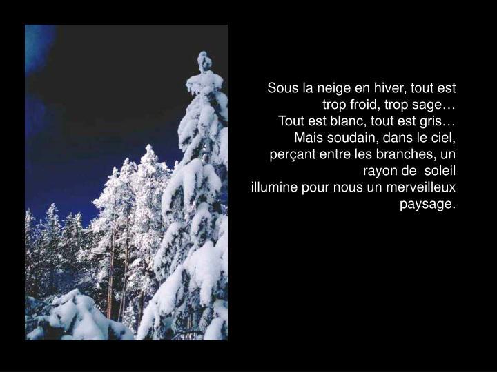 Sous la neige en hiver, tout est trop froid, trop sage…