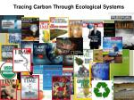 tracing carbon through ecological systems