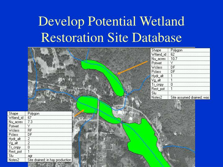 Develop Potential Wetland Restoration Site Database