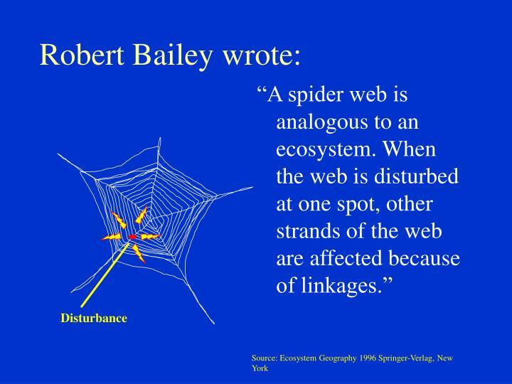 Robert bailey wrote