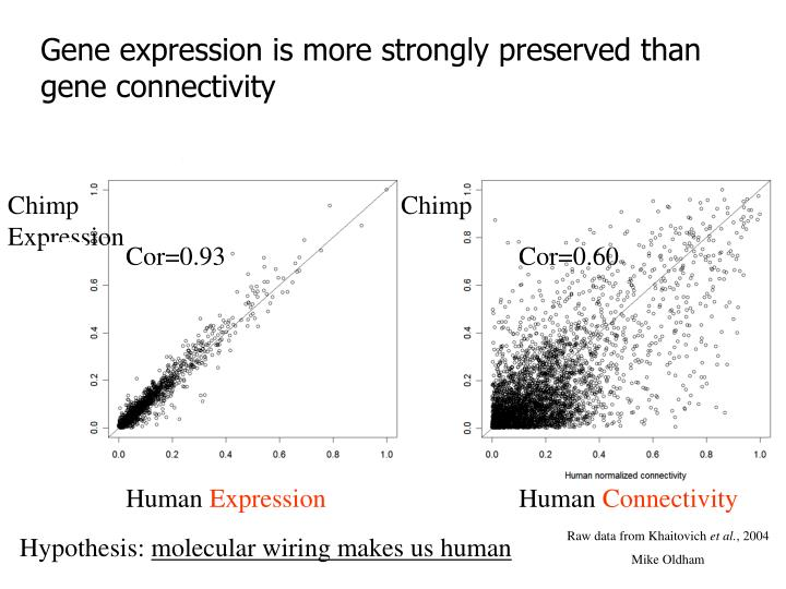 Gene expression is more strongly preserved than gene connectivity