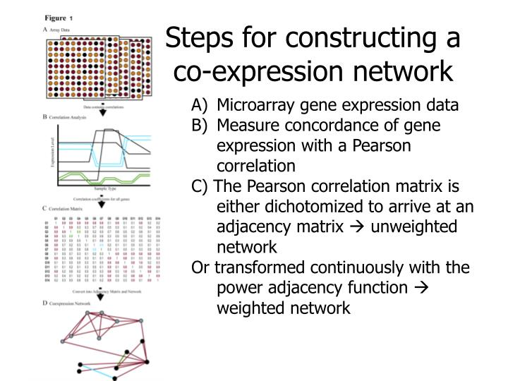 Overview: gene co-expression network analysis