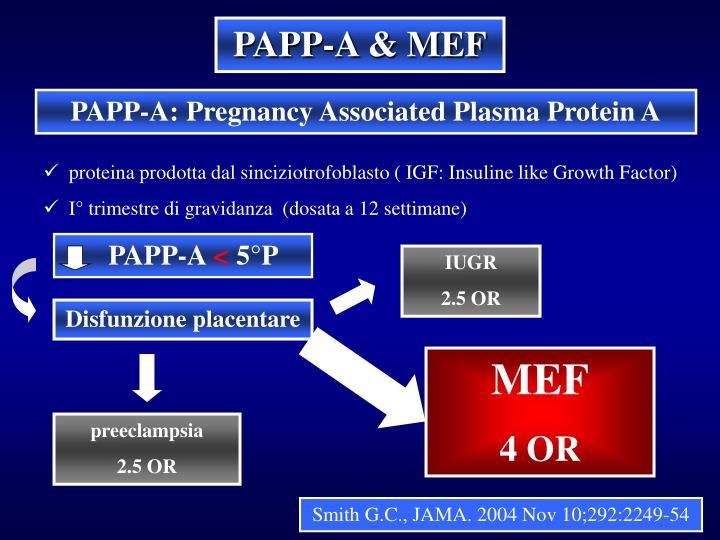 PAPP-A & MEF