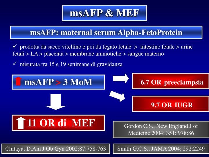 msAFP & MEF