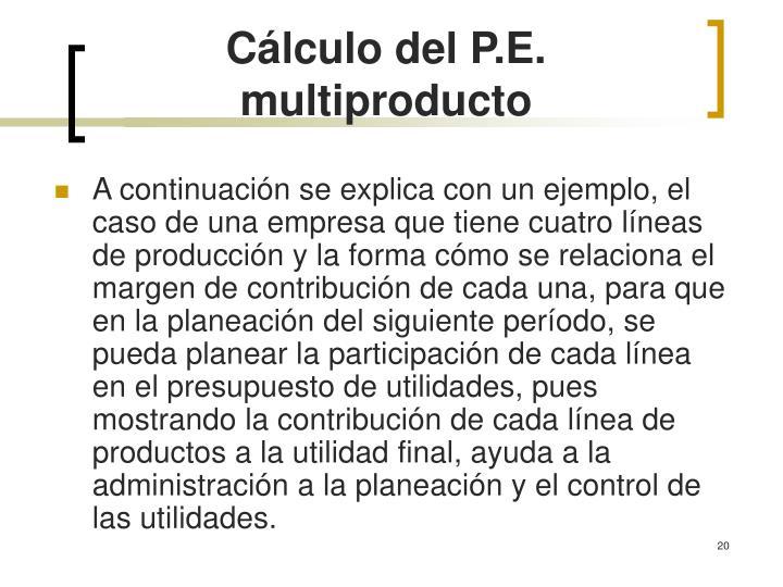 Cálculo del P.E. multiproducto