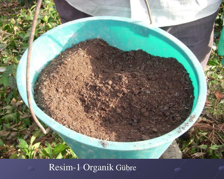 Resim-1 Organik