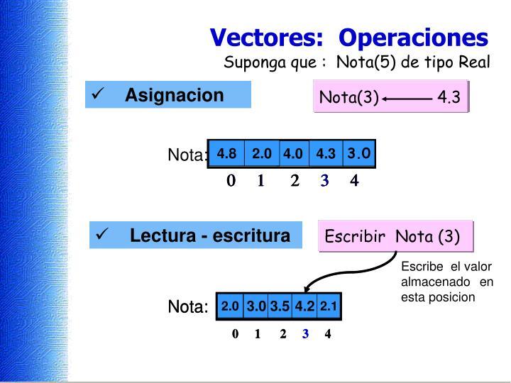 Nota(0)            4.8