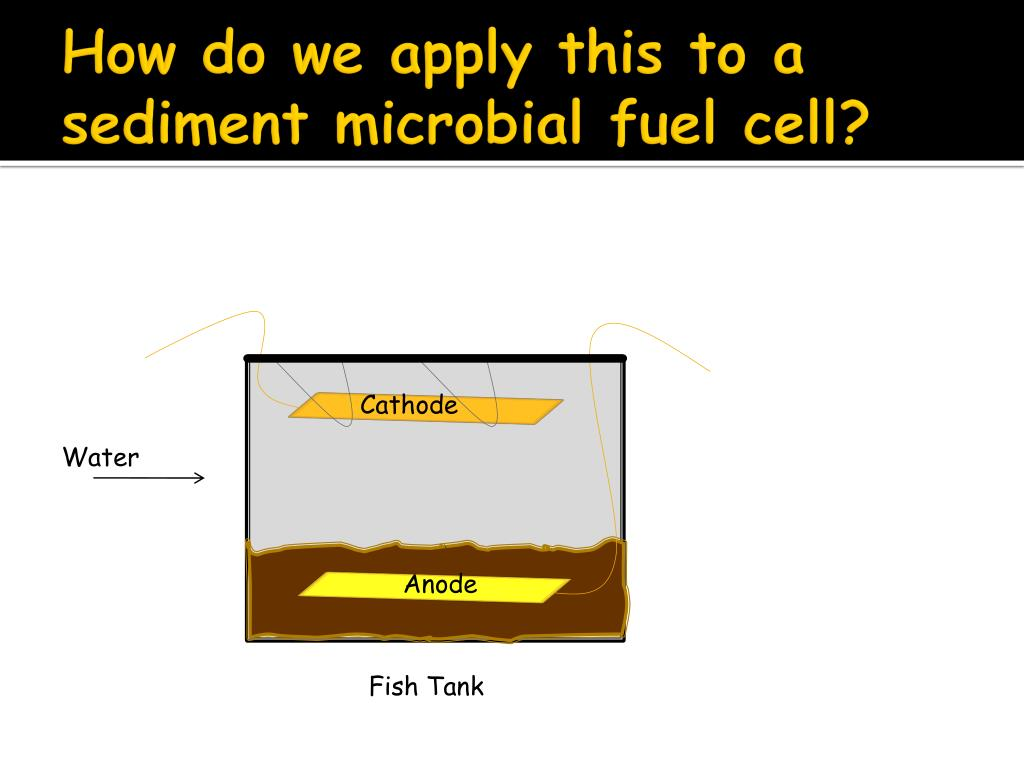 PPT - An Introduction to Sediment Microbial Fuel Cells PowerPoint