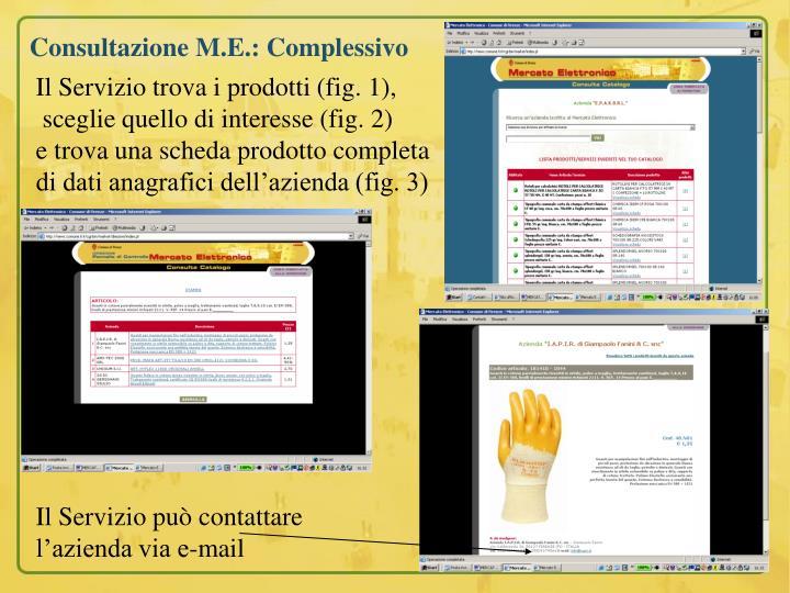 Consultazione M.E.: Complessivo