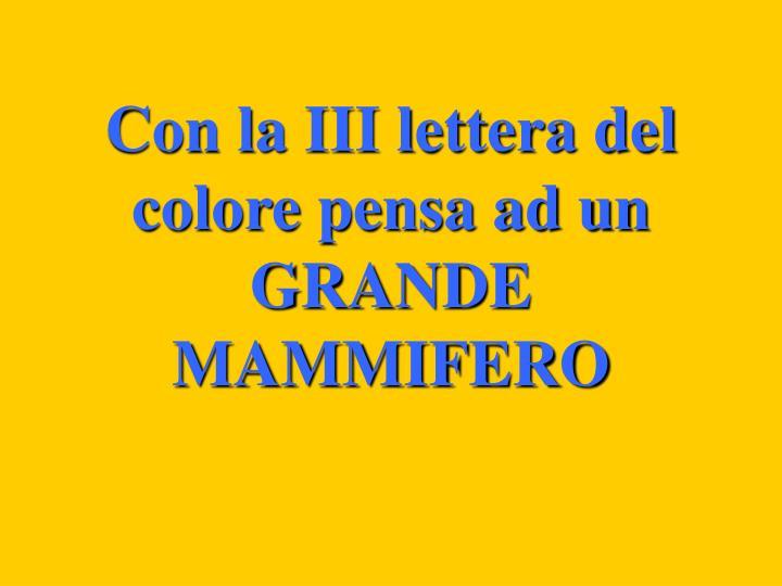 Con la III lettera del colore pensa ad un GRANDE MAMMIFERO