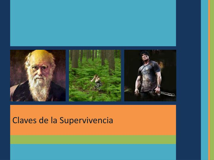 Claves de la Supervivencia