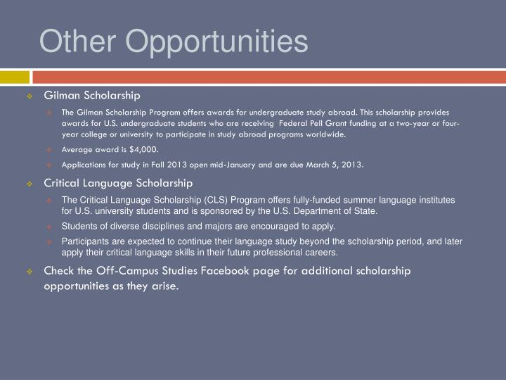 Other Opportunities