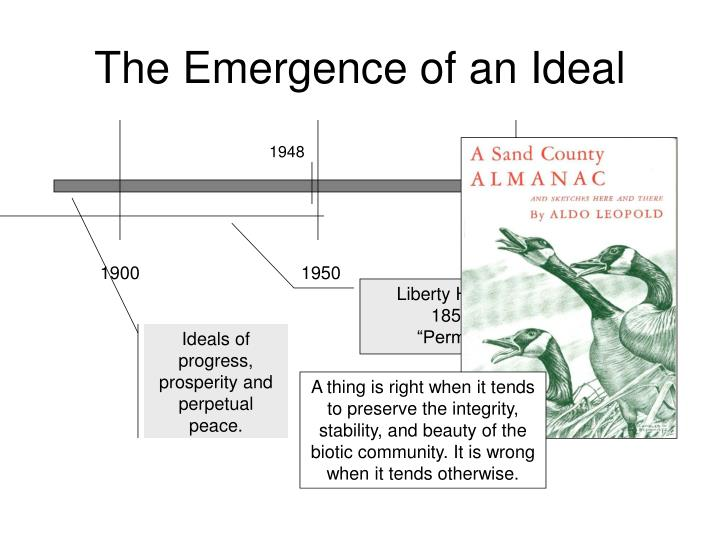 The emergence of an ideal
