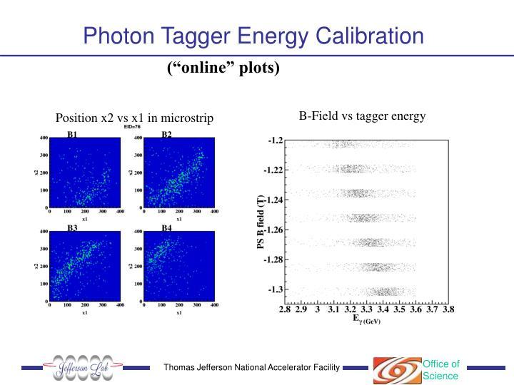Photon Tagger Energy Calibration