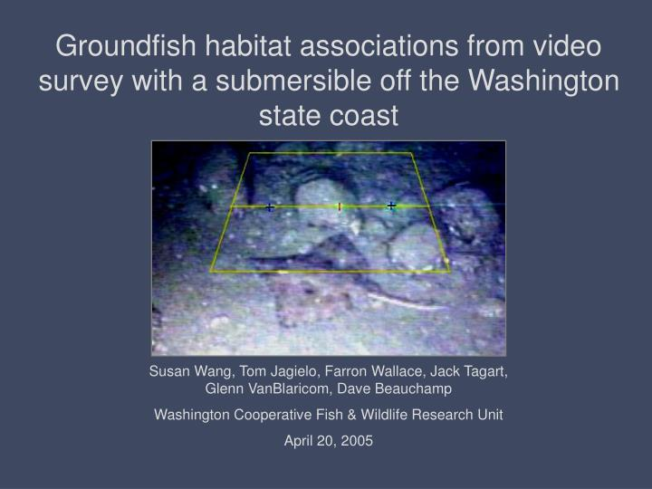 groundfish habitat associations from video survey with a submersible off the washington state coast n.