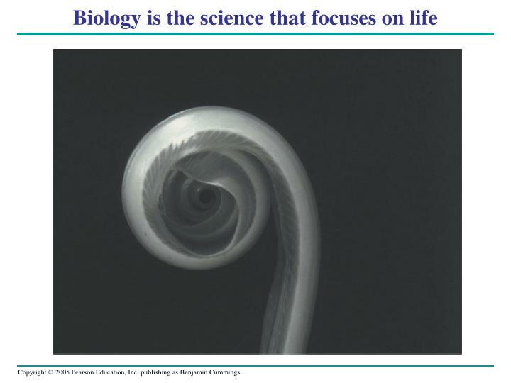 biology is the science that focuses on life n.