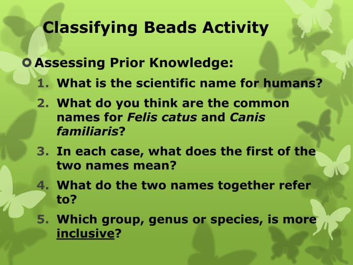 classifying beads activity n.