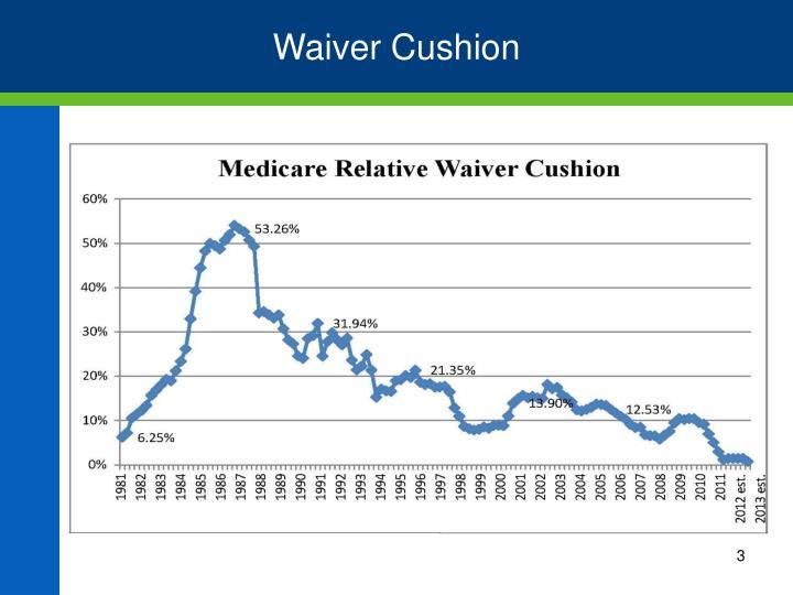 Waiver Cushion