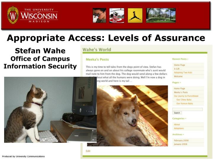 appropriate access levels of assurance n.