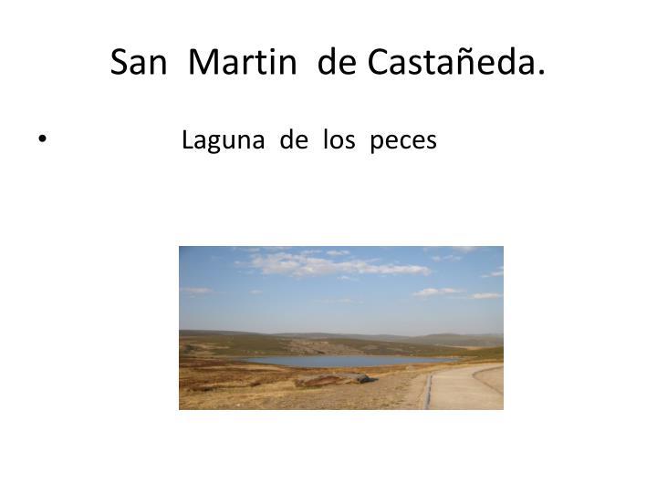 San  Martin  de Castañeda.