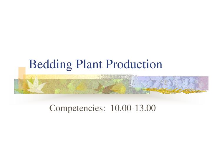 bedding plant production n.