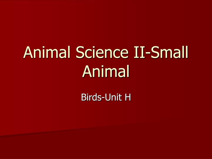 animal science ii small animal n.