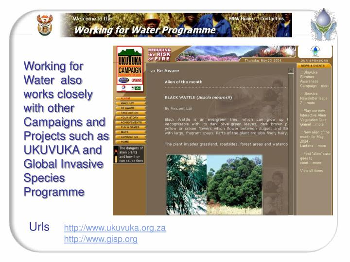 Working for Water  also works closely with other Campaigns and Projects such as