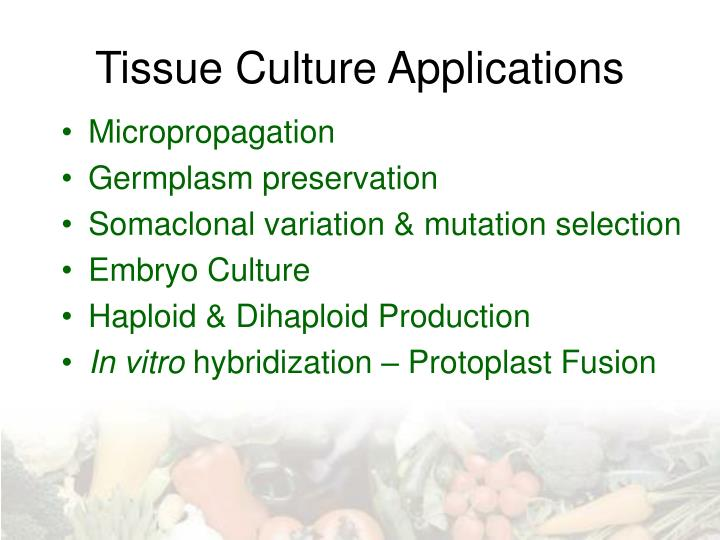 tissue culture applications n.