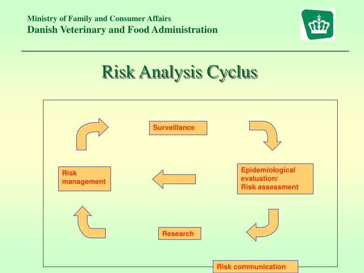 Risk Analysis Cyclus