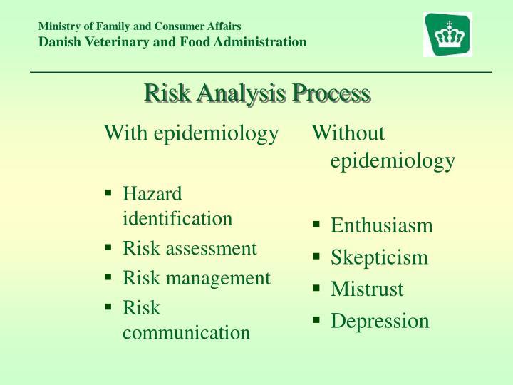 Risk Analysis Process