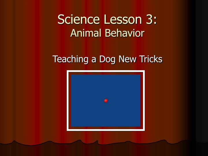 science lesson 3 animal behavior n.
