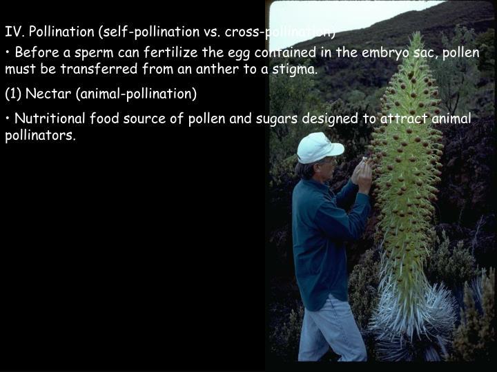 IV. Pollination (self-pollination vs. cross-pollination)