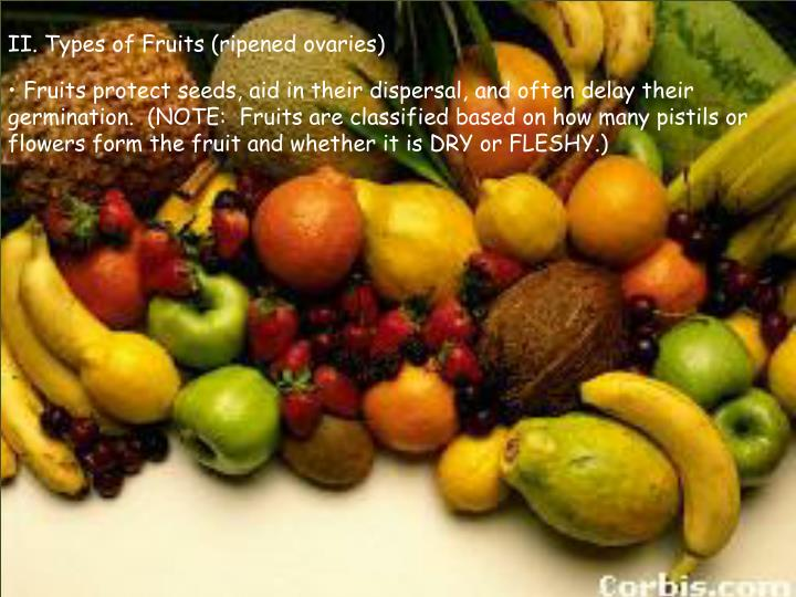 II. Types of Fruits (ripened ovaries)